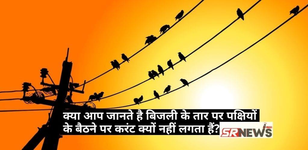 Birds ko current kyo nhi lgta