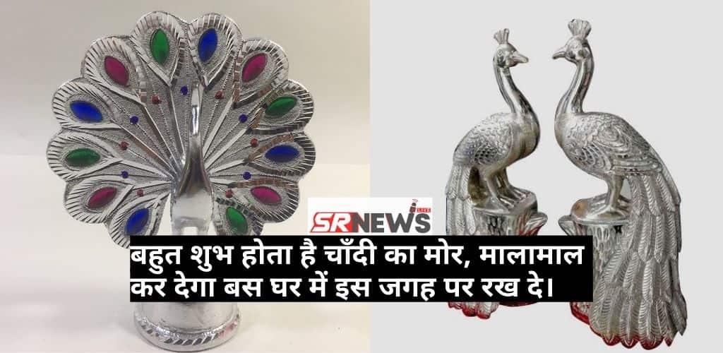 Silver Peacock