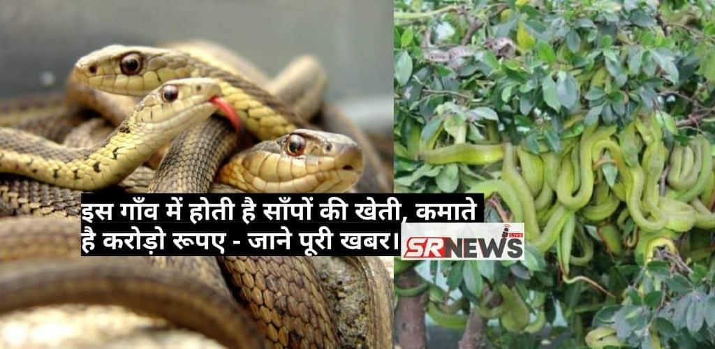 Snakes Farming