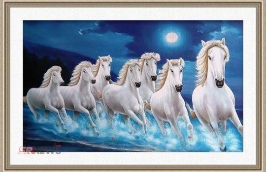 7 horses photo