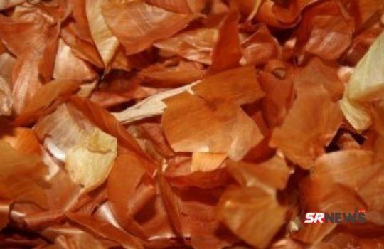 Benefits of Onion Peel