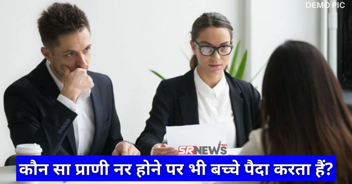 Interview Question in Hindi