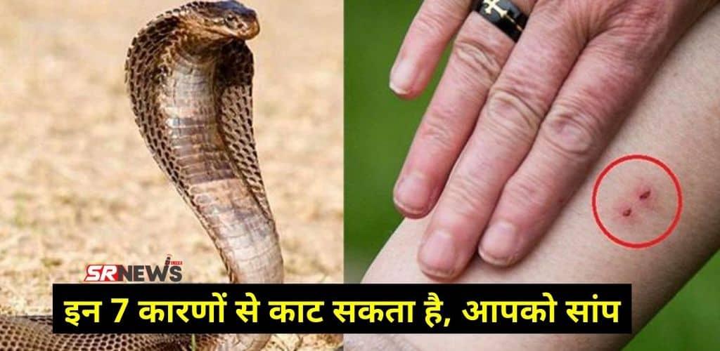 Snake attack reason