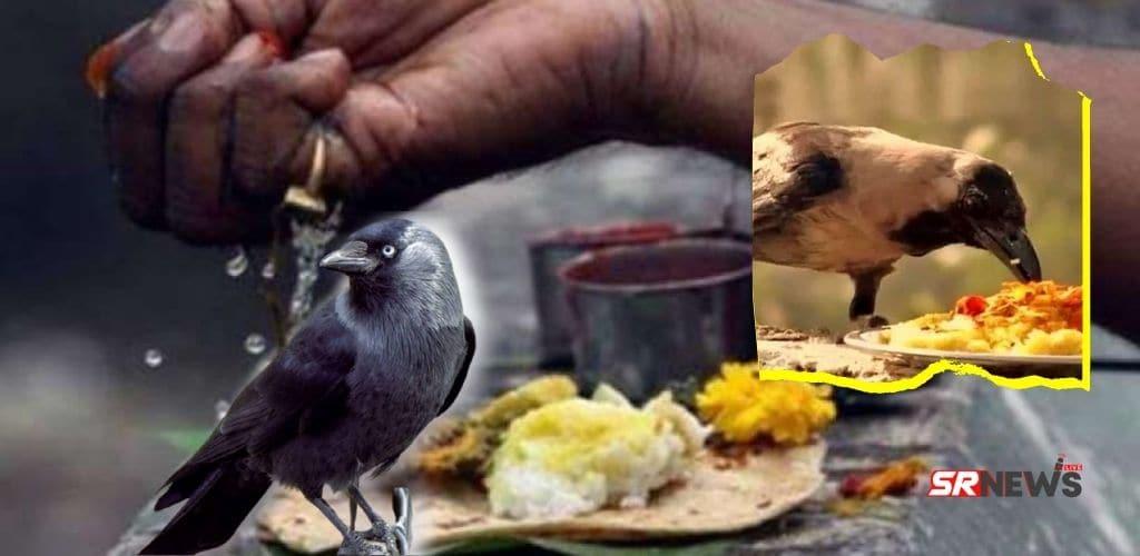 crow ka bhojan