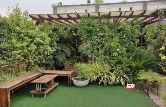 modern garden on roof