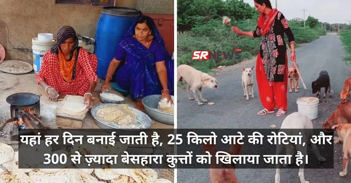Kutch charan family feed dogs