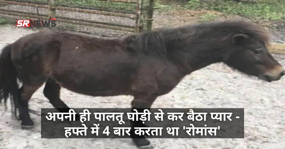 Love with pony