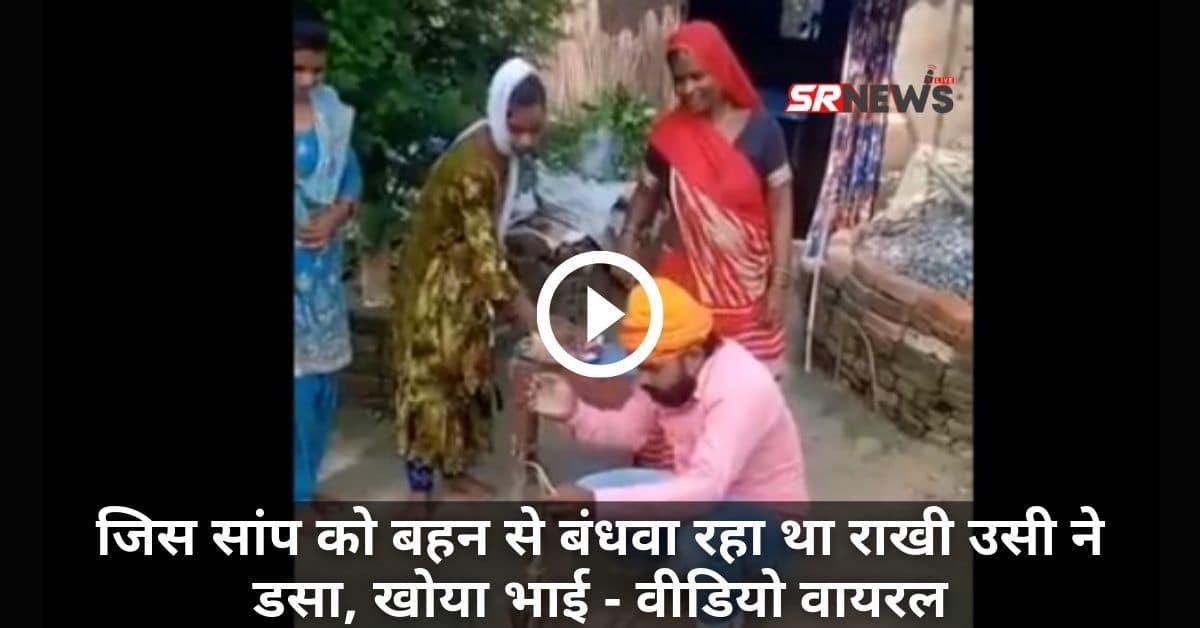Saanp Viral Video