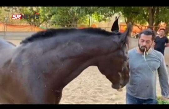 Salman khan ate horse grass