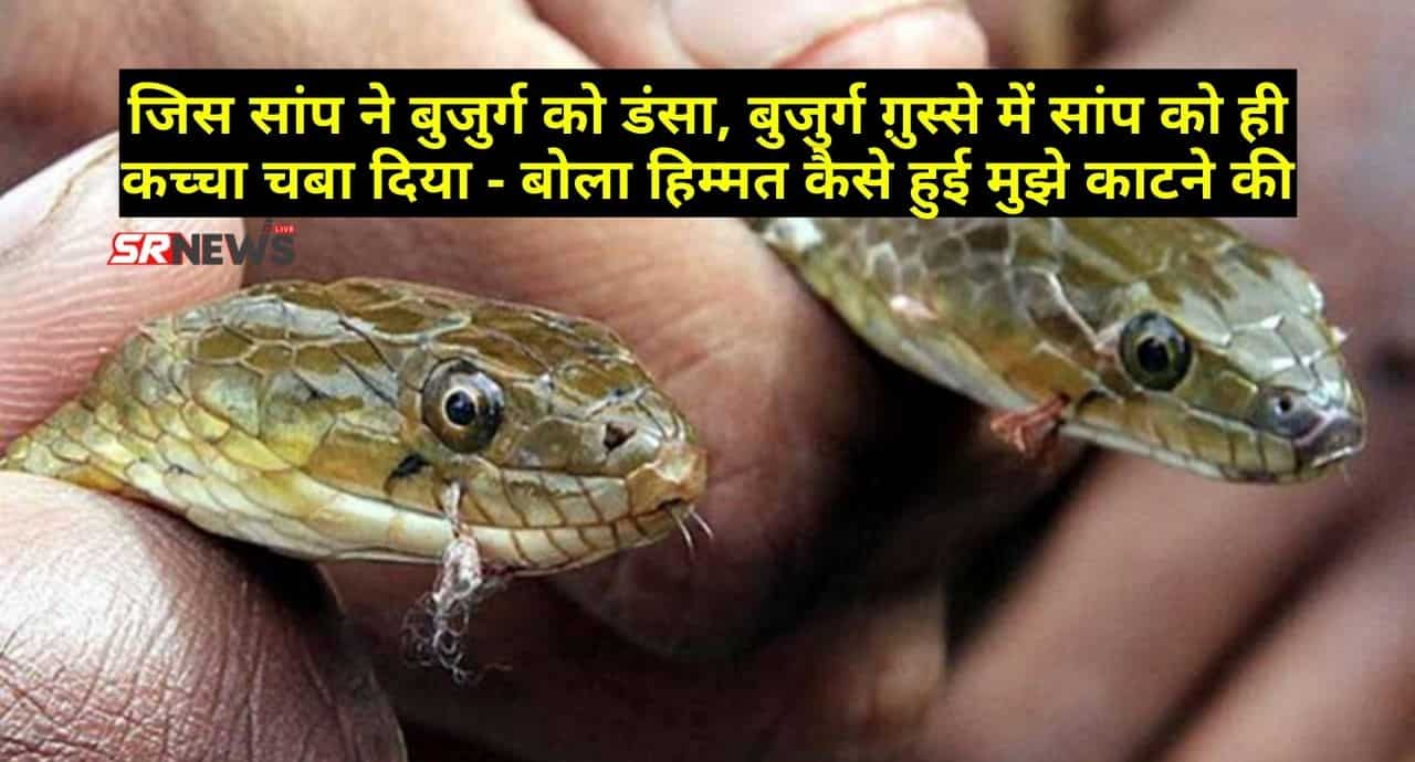 Snake news bihar