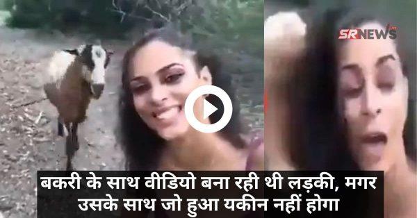 बकरी के साथ वीडियो बना रही थी लड़की, मगर उसके साथ जो हुआ यकीन नहीं होगा – Video Viral