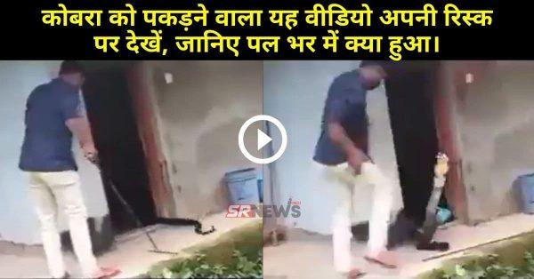 Video : कोबरा को पकड़ने वाला यह वीडियो अपनी रिस्क पर देखें, जानिए पल भर में क्या हुआ।