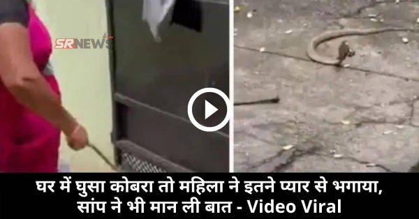 घर में घुसा कोबरा तो महिला ने इतने प्यार से भगाया, सांप ने भी मान ली बात – Video Viral