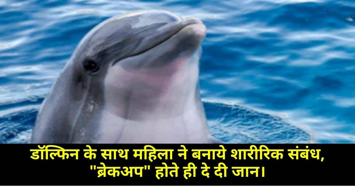 Physical relationship with Dolphin