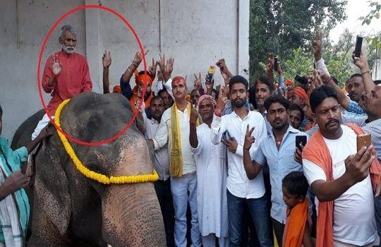 Shyam Bahadur singh on hathi