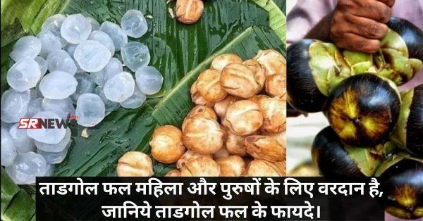 ताडगोल फल महिला और पुरुषों के लिए वरदान है, जानिये ताडगोल फल के फायदे।