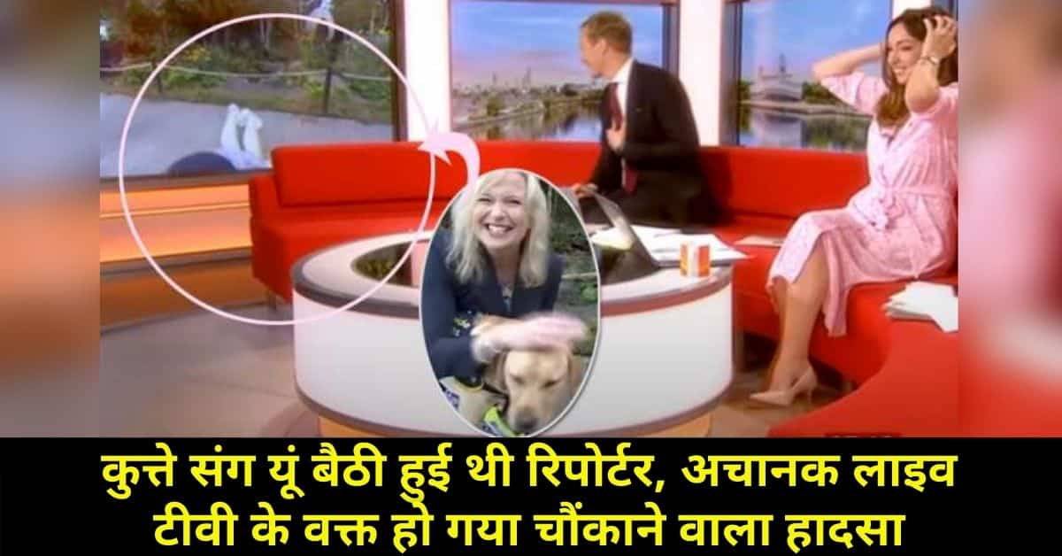 news anchor live reporter funny video
