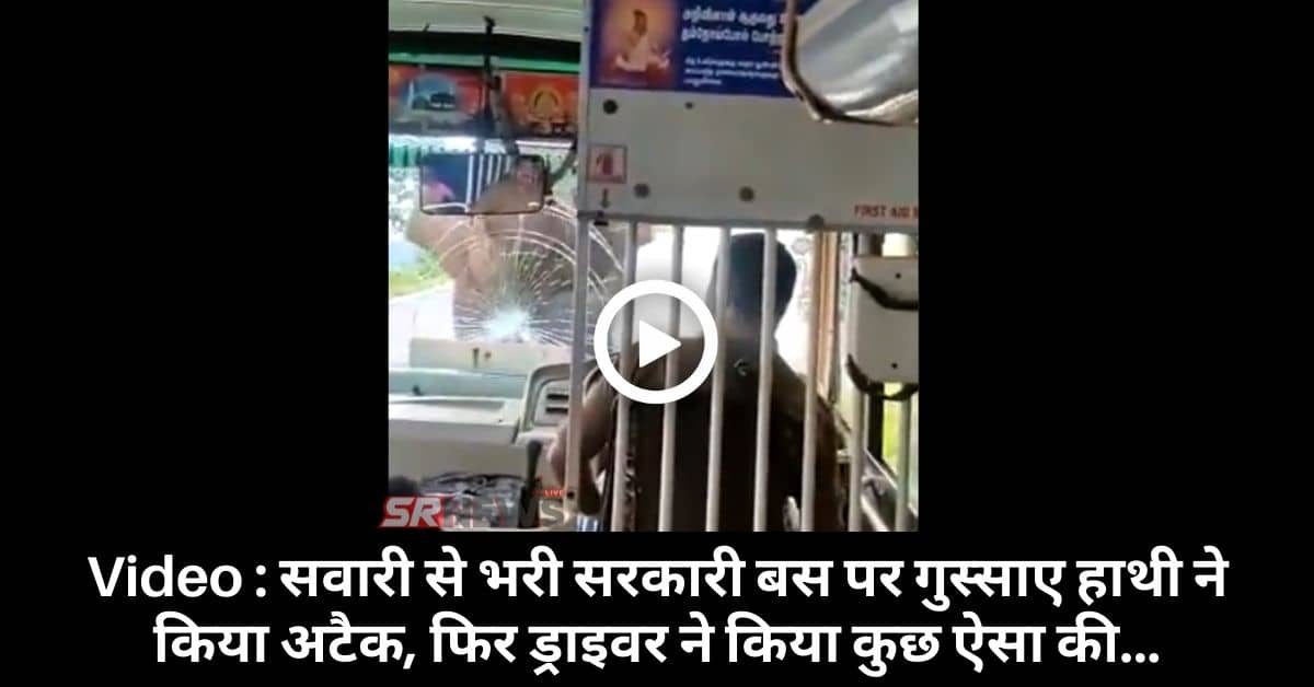 Angry Elephant attack on bus