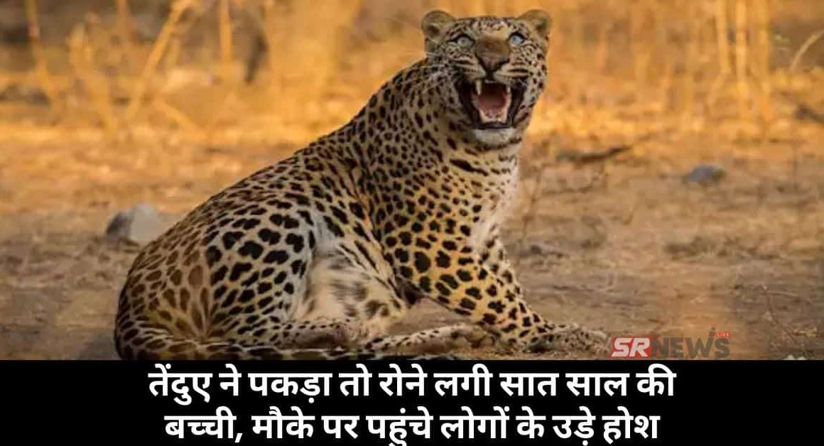Leopard attack on 7 year old child in up