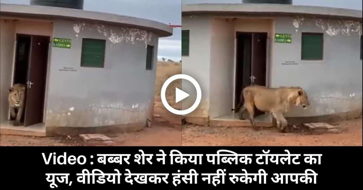 Tiger Viral video